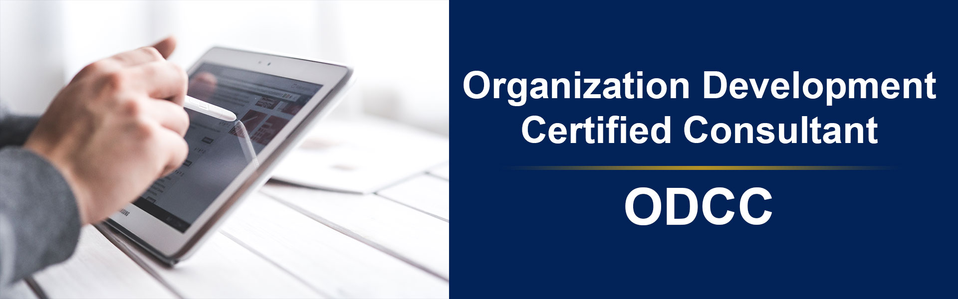 Organization Development Certified Consultant