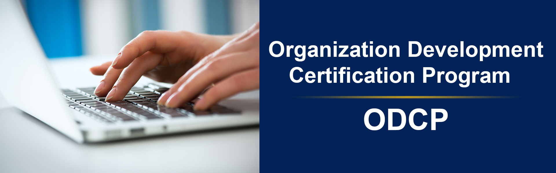 Organization Development Certification Program