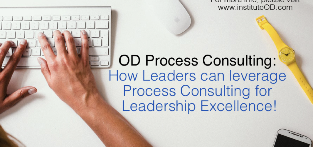 how leaders can leverage process consuling for leadership excellence
